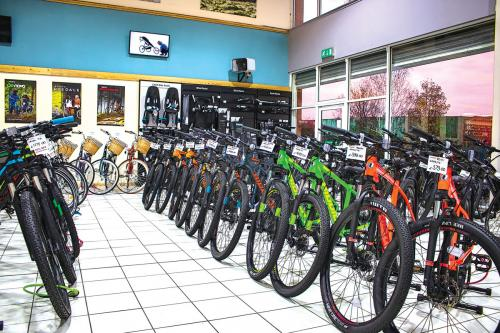 Bikes for all the family